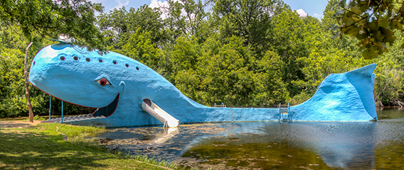 The Blue Whale of Catoosa is a waterfront structure, located just east of the town of Catoosa, Oklahoma, and it has become one of the most recognizable attractions on old Route 66. Hugh Davis built the Blue Whale in the early 1970s as a surprise anniversary gift to his wife Zelta, who collected whale figurines.[1] The Blue Whale and its pond became a favorite swimming hole for both locals and travelers along Route 66 alike.  Originally, the pond surrounding the massive Blue Whale was spring fed and intended only for family use. However, as many locals began to come to enjoy its cool waters, Davis brought in tons of sand, built picnic tables, hired life guards, and opened his masterpiece to the public
